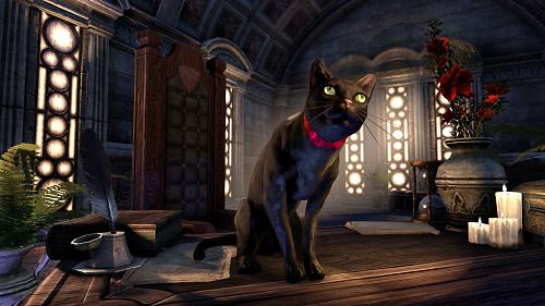 Amazonダウンロード版限定デジタルアイテム 黒猫ミミ